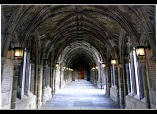 Top 10 Colleges for Ambitious Students