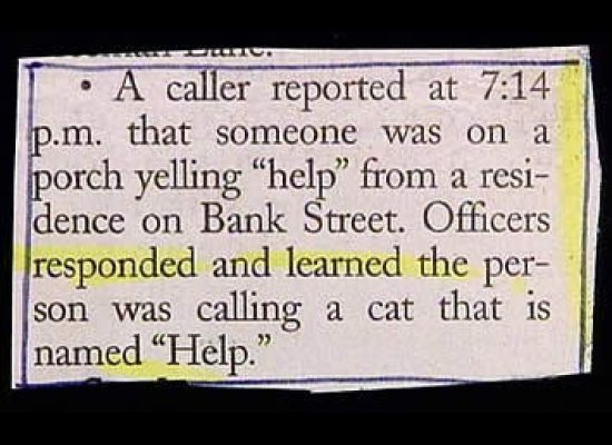 police blotter cat named help