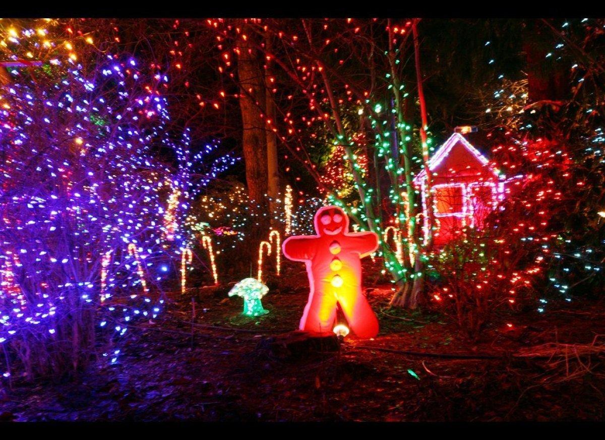Festival of lights at vancouver 39 s vandusen botanical - Garden of lights botanical gardens ...