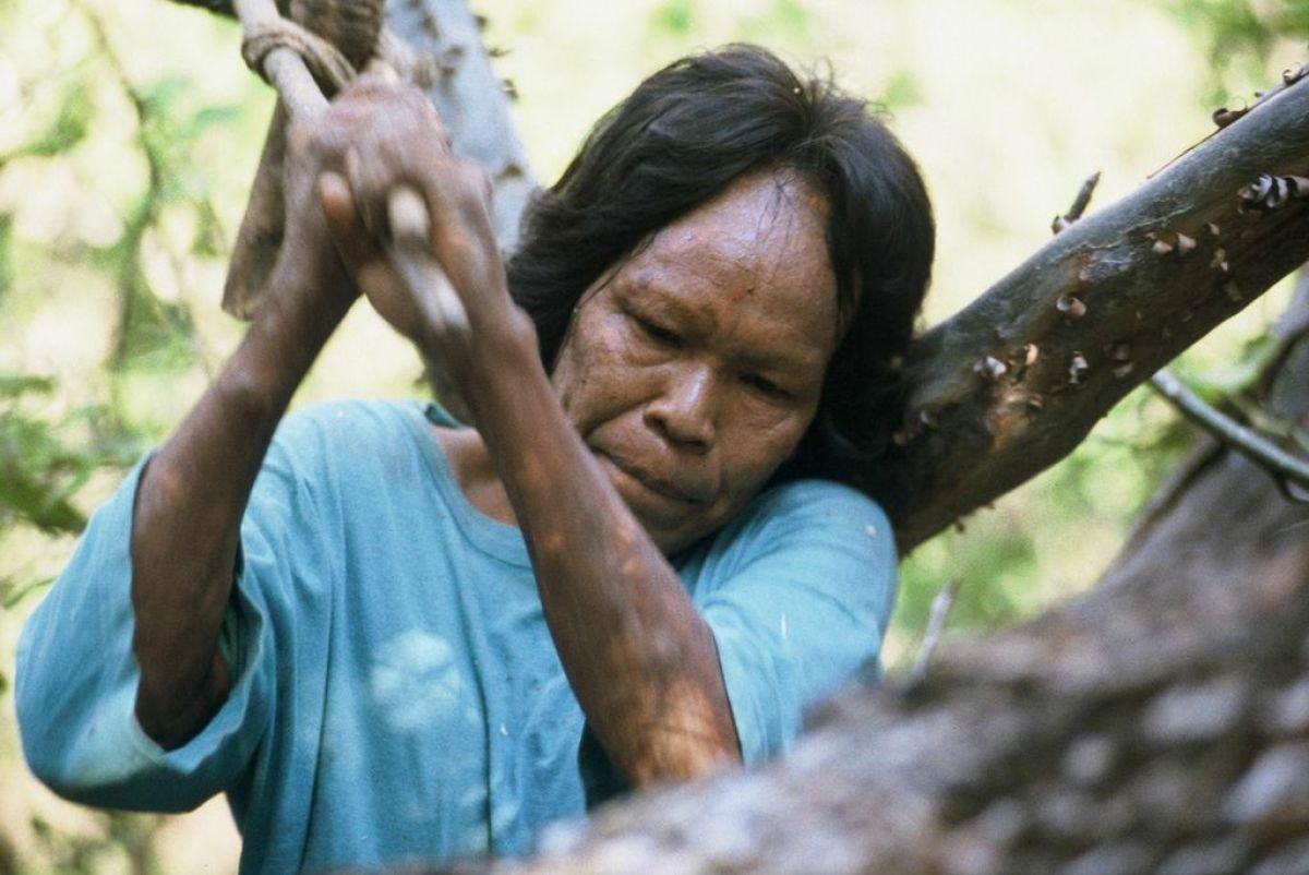 brazilian tribal girls having sex