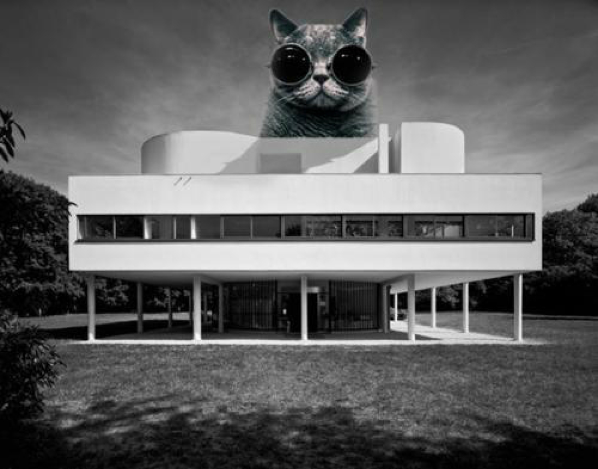 the invasion of architectural lolcats photos huffpost. Black Bedroom Furniture Sets. Home Design Ideas