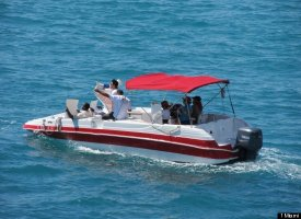 Protestors Boat To Micky Arison S Yacht Ask Tax Averse Carnival Ceo To Be Miami S Warren