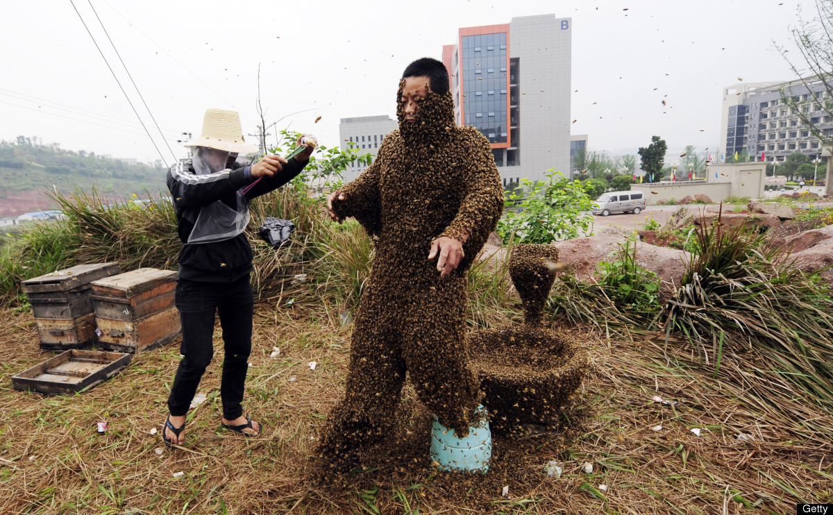 Man Covered in 330,000 Bees Slide_221637_888851_free
