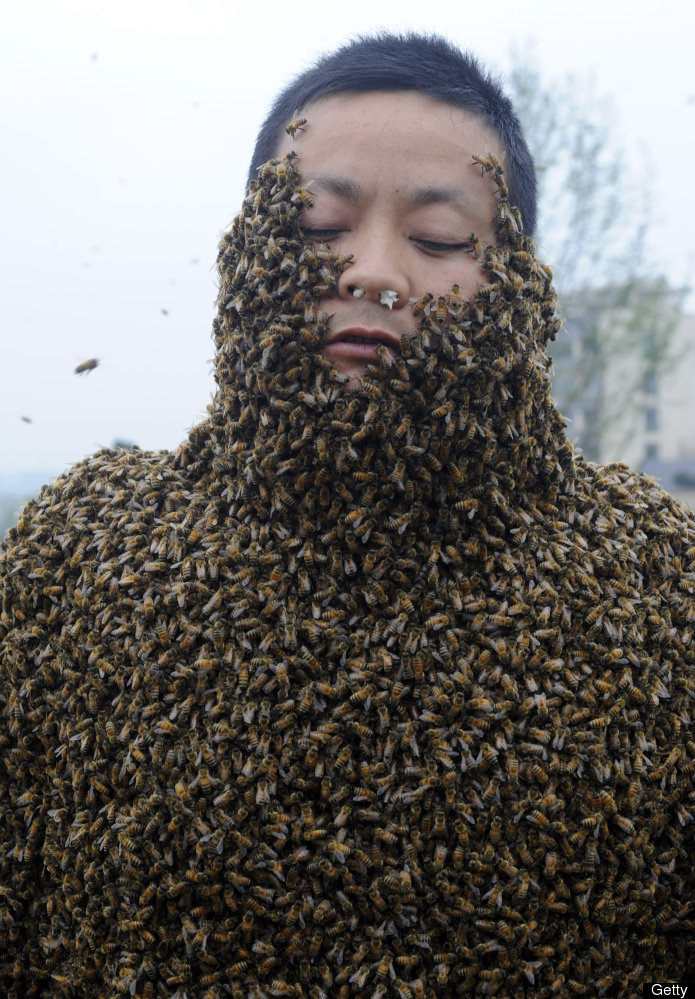Man Covered in 330,000 Bees Slide_221637_888864_free