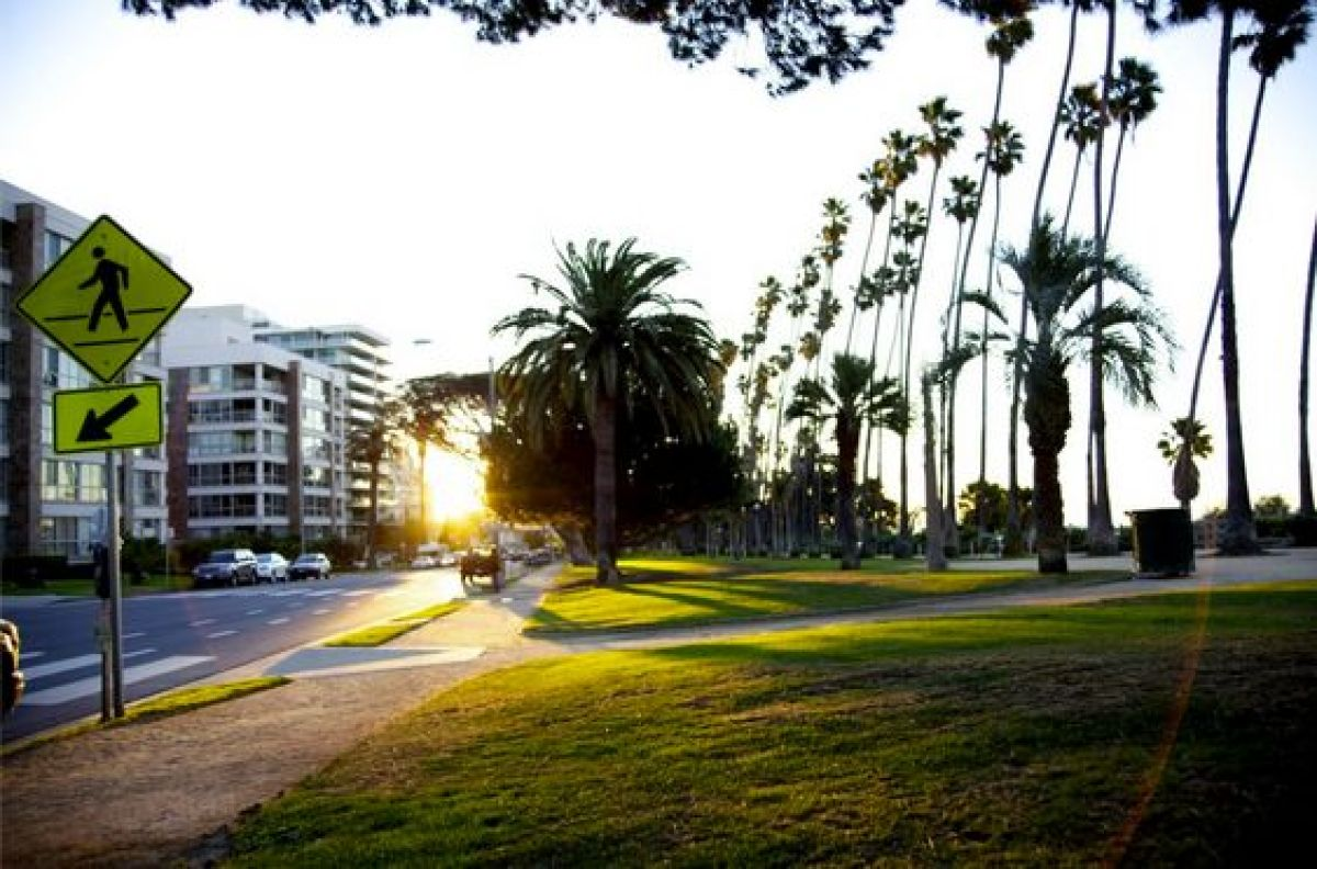 Image Result For Beverly Gardens Park Location
