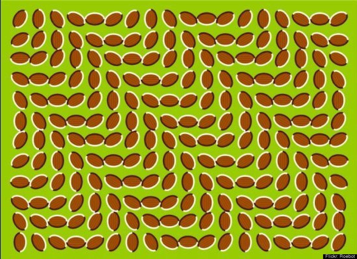 Optical Illusion Lets ...