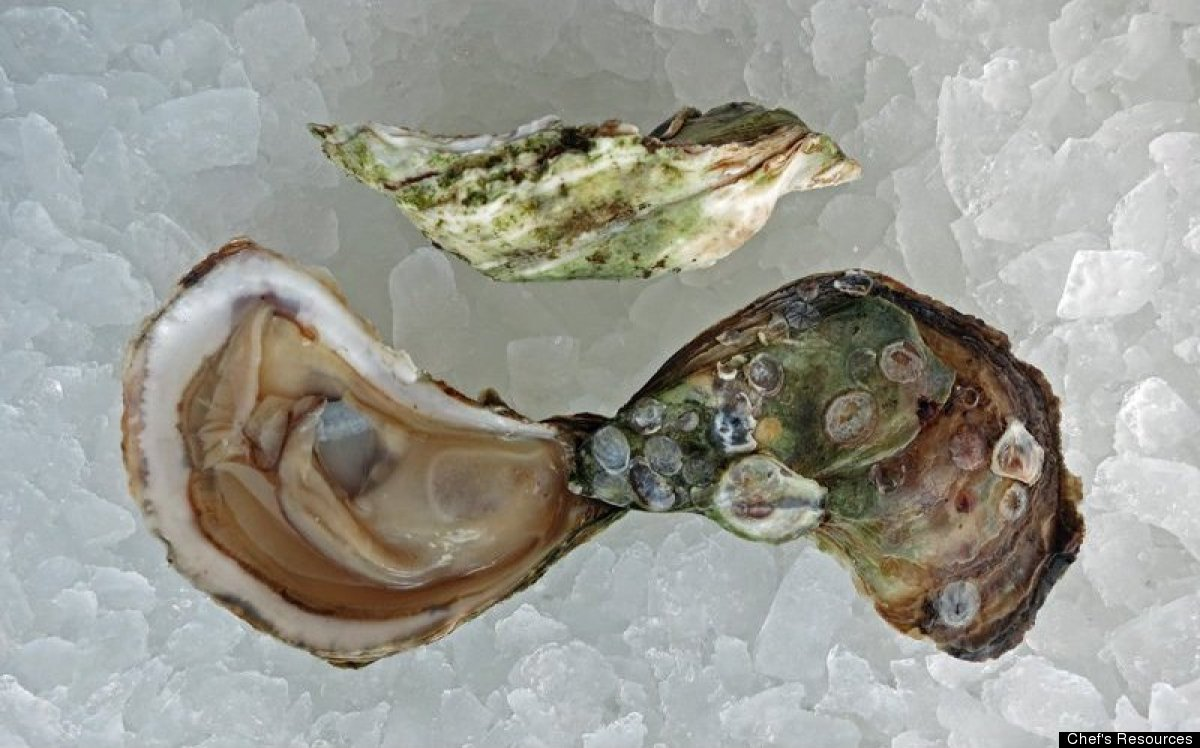 East Coast Oysters: A Guide To Origin, Flavor And How To Eat Them ...