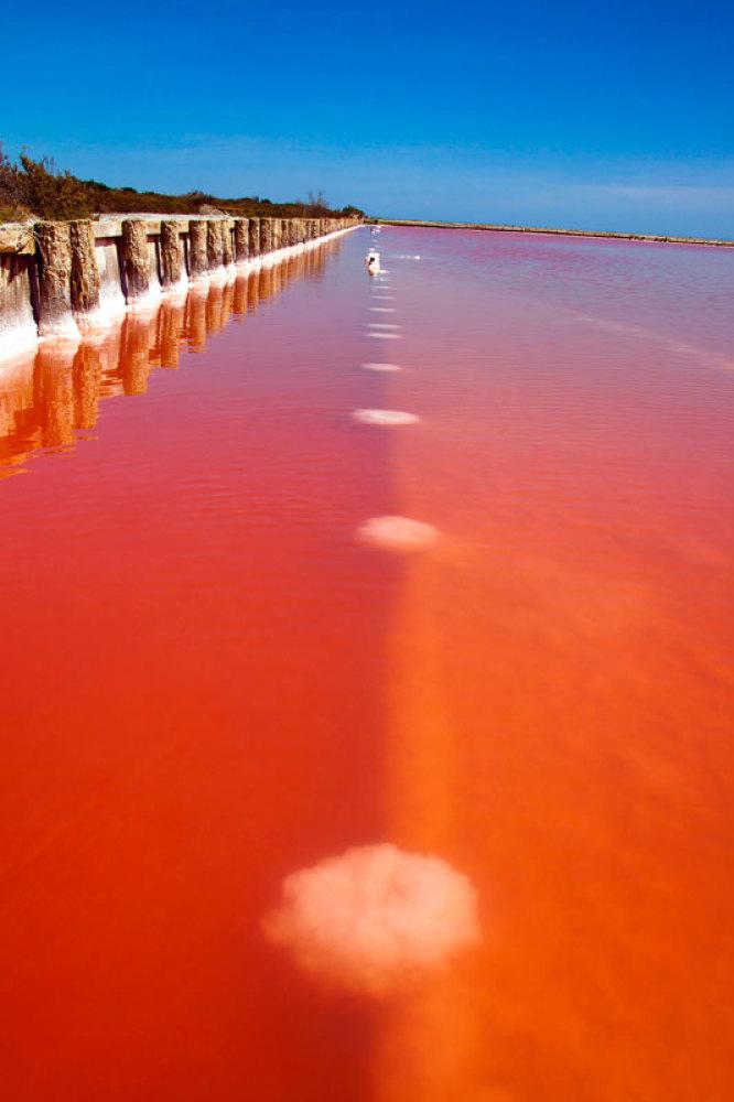 скачать Red Lake торрент - фото 7