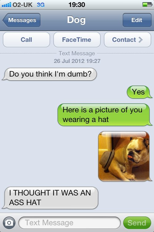top funny iPhone best Texts from dog jokes about dogs pet family good laugh