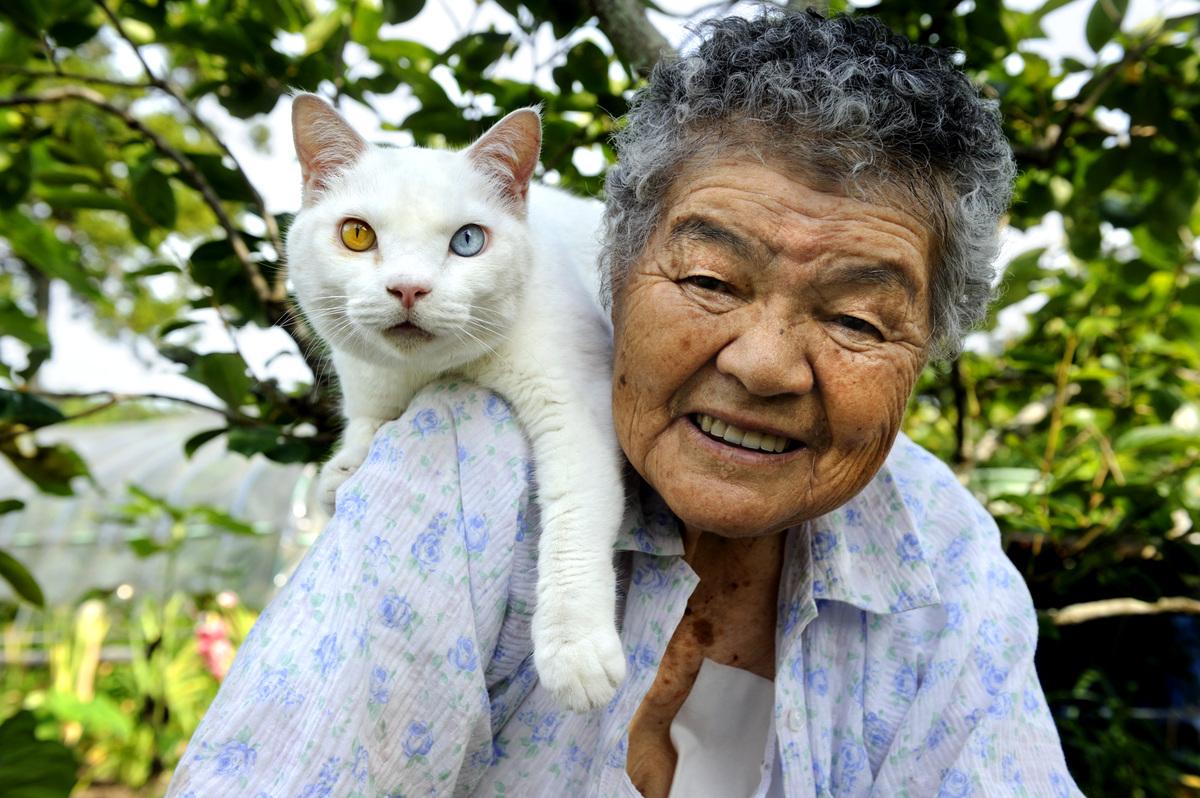 Смотреть японские старушки 5 фотография