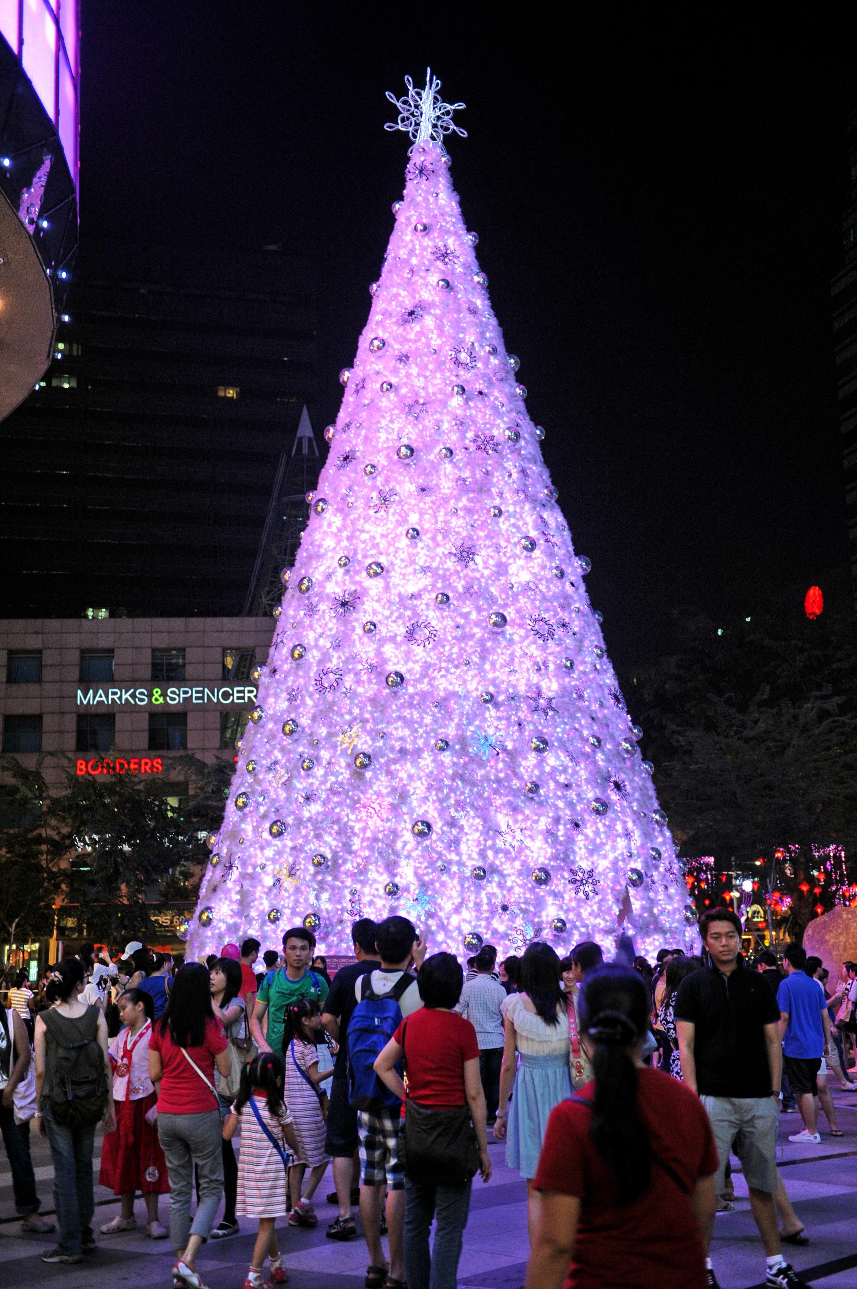 Festive Fun Extravagantly Extreme Christmas Trees