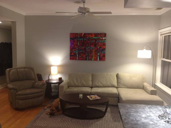 Photobombing Dog On Craigslist Makes Chicago Apartment So ...