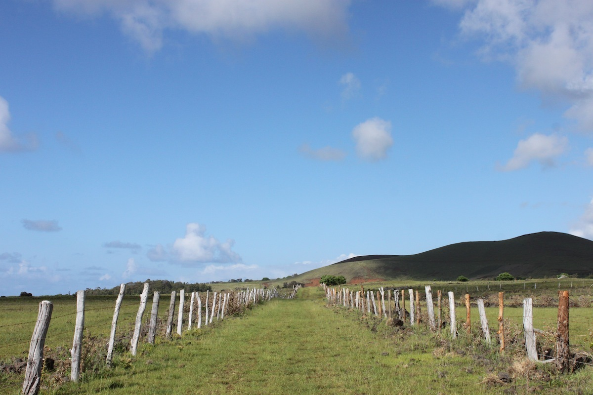 10 Things To Do On Easter Island That Don't Involve Stone Heads ...