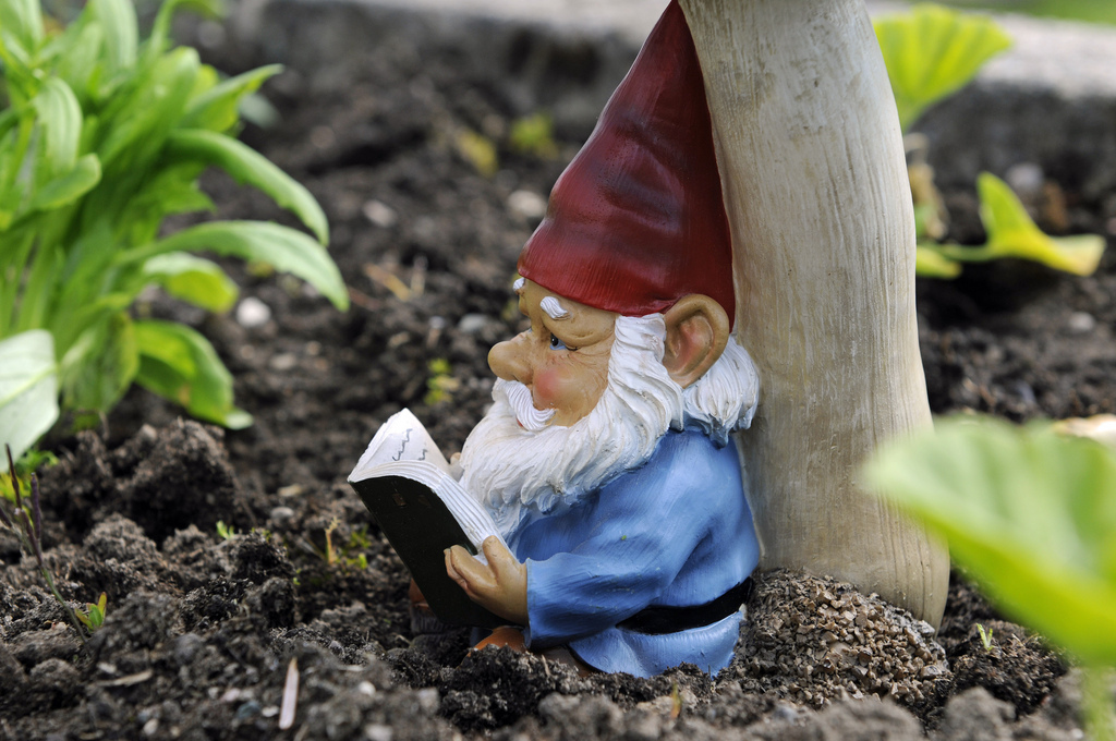 Gnome In Garden: Woman's Home In Devon, England Besieged By Gnomes