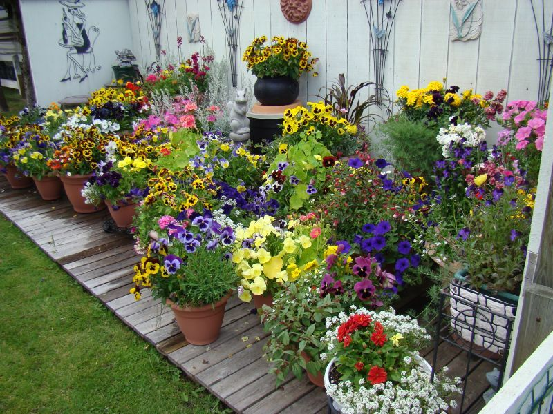 Create a clever container garden using an old wagon photo for Garden planter ideas