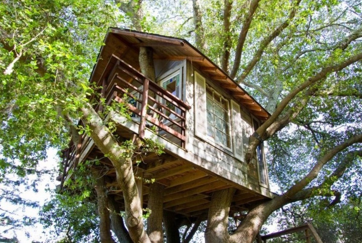 Tree Houses California Tree Houses You Can Live in