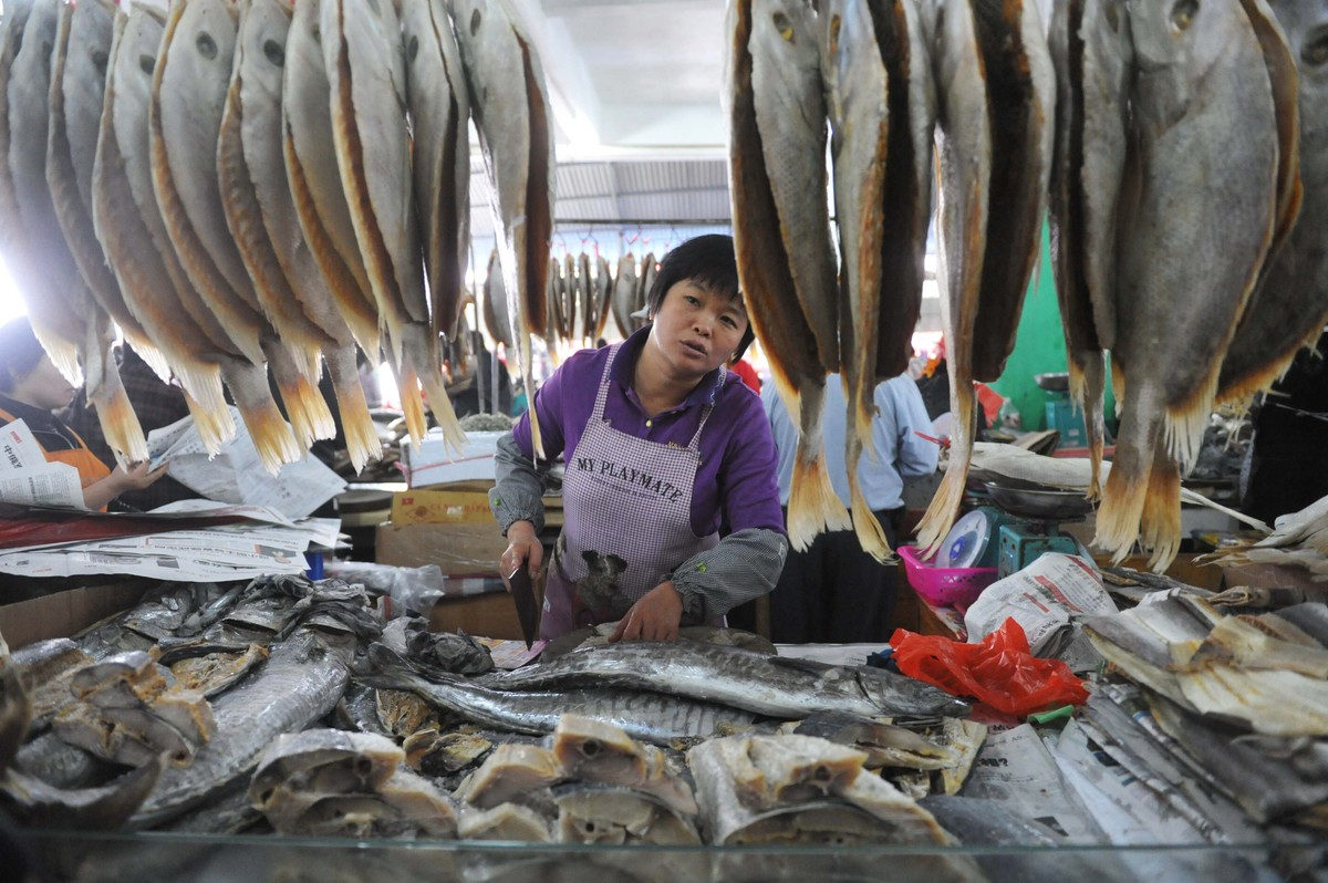 The most breathtaking photos from around the world this for Oriental fish market