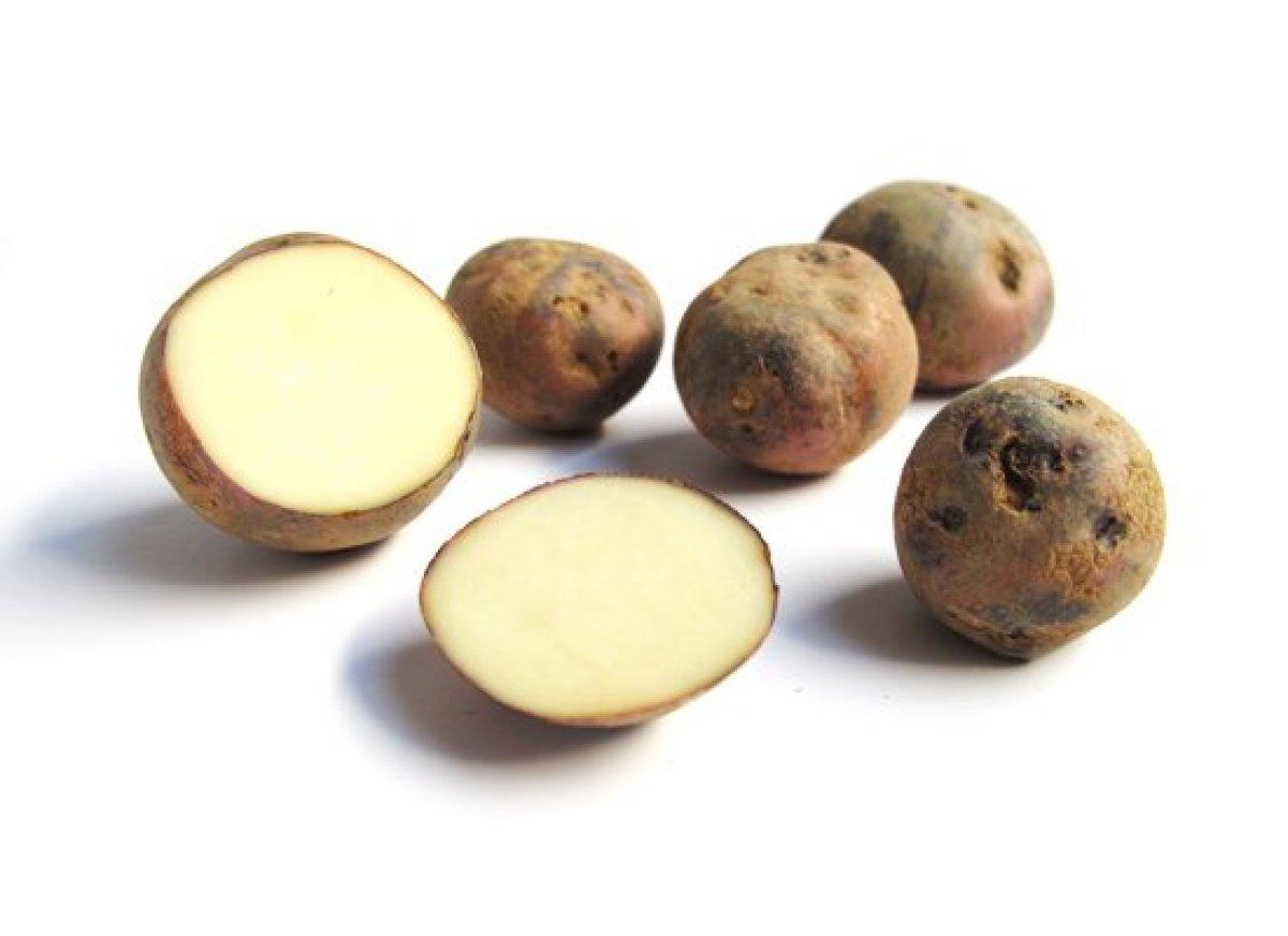 mashed potatoes easiest mashed potatoes perfect mashed potatoes garlic ...