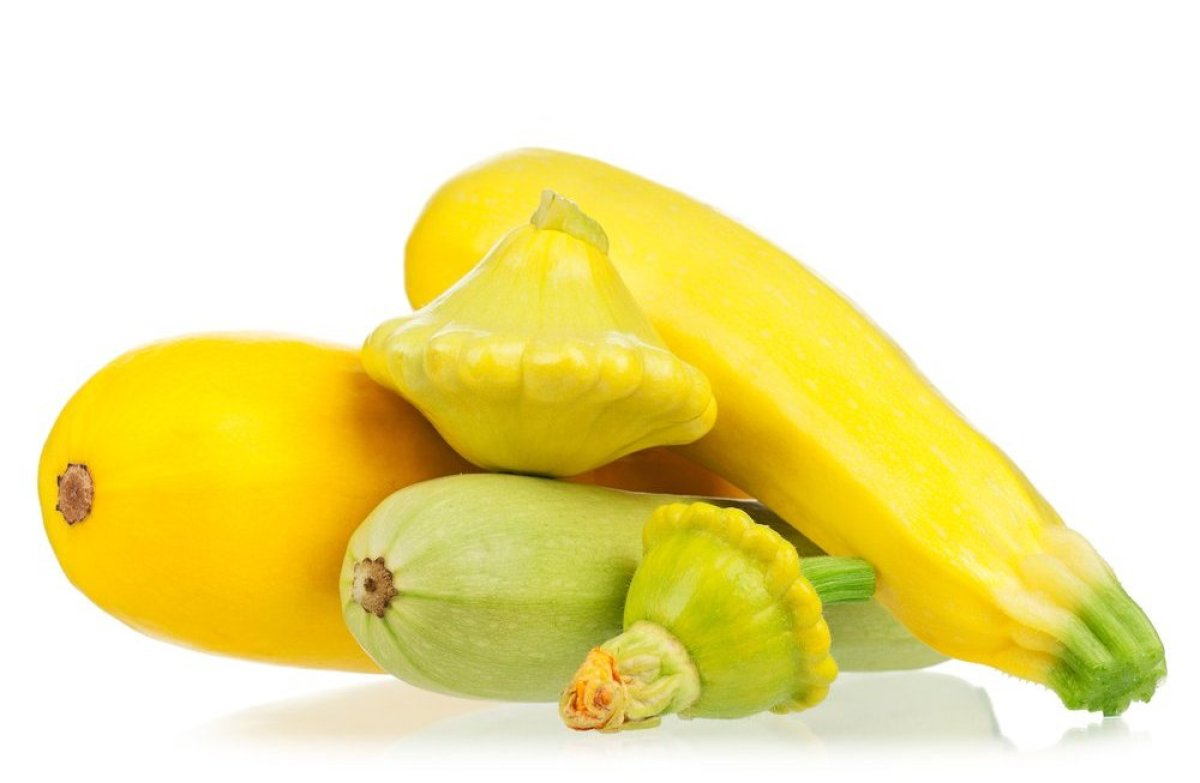 how to fix yellow squash