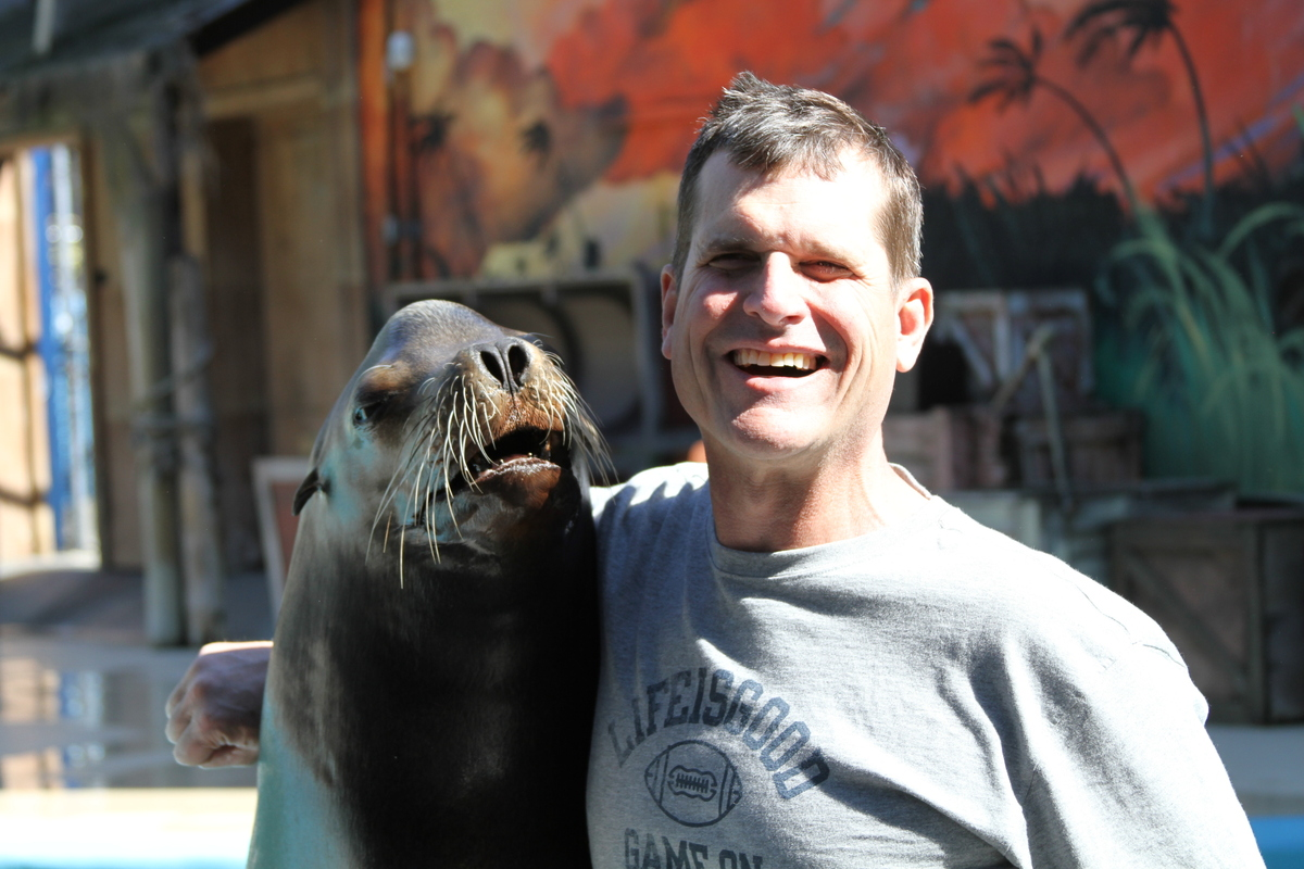 49ers Coach Jim Harbaugh Had A Pushup Contest With A Walrus