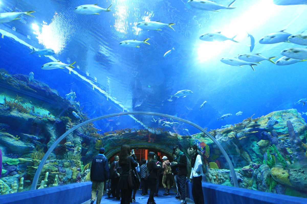 Worlds Largest Aquarium Opens In China - Biggest ocean in the world