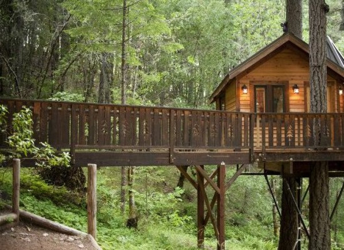 5 Incredible Treehouses You Can Actually Rent Around The