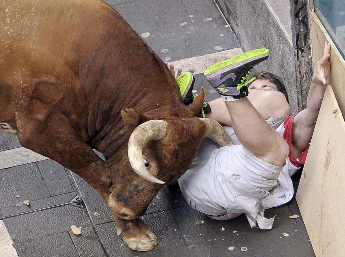 Секс с бычком 3 фотография