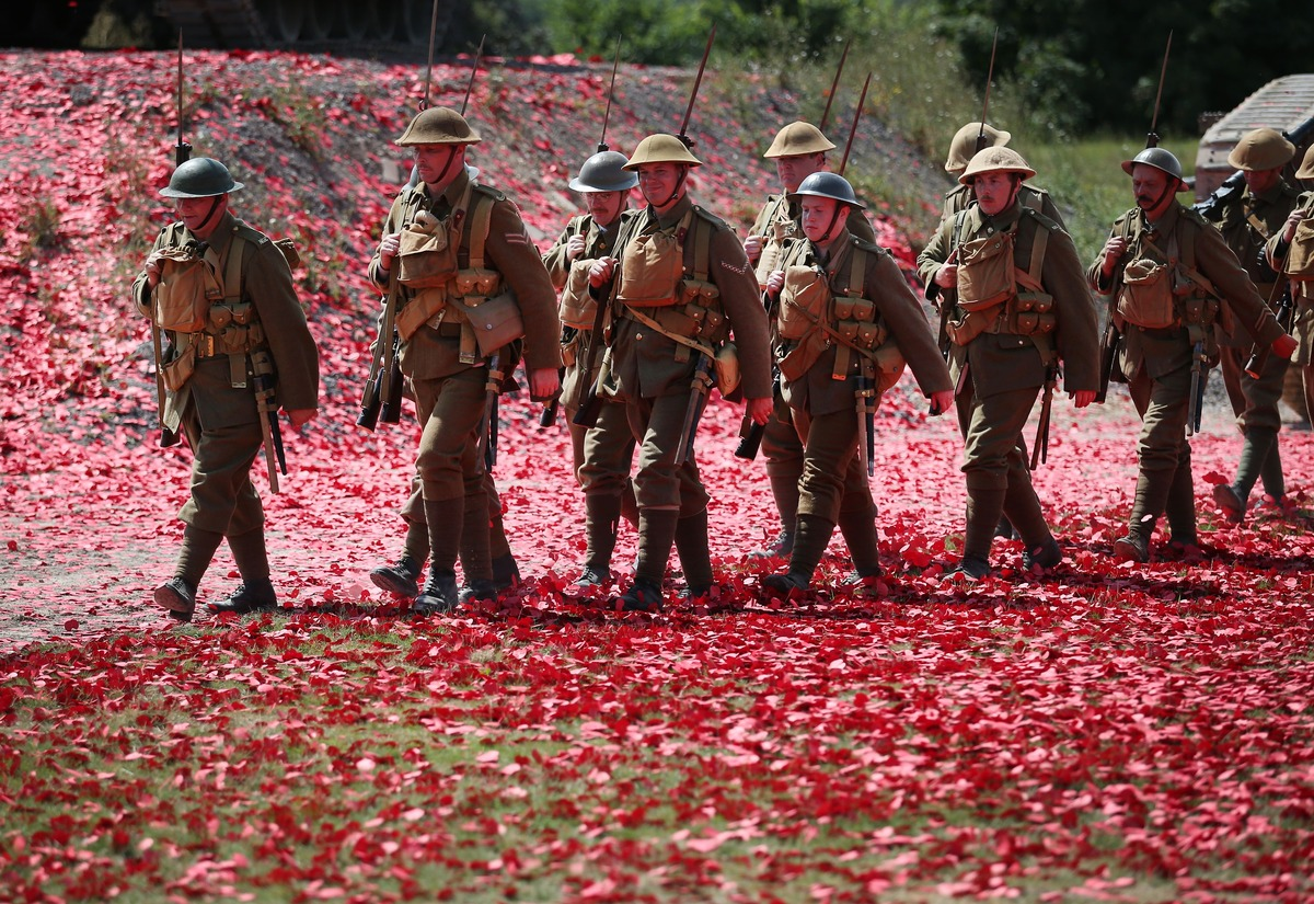 What Does The Poppy Symbolize Home Design