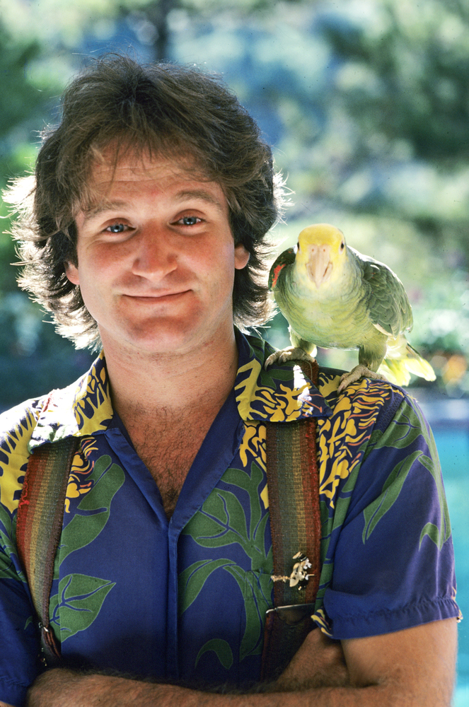 Robin Williams Quotes That Will Stay With Us   HuffPost