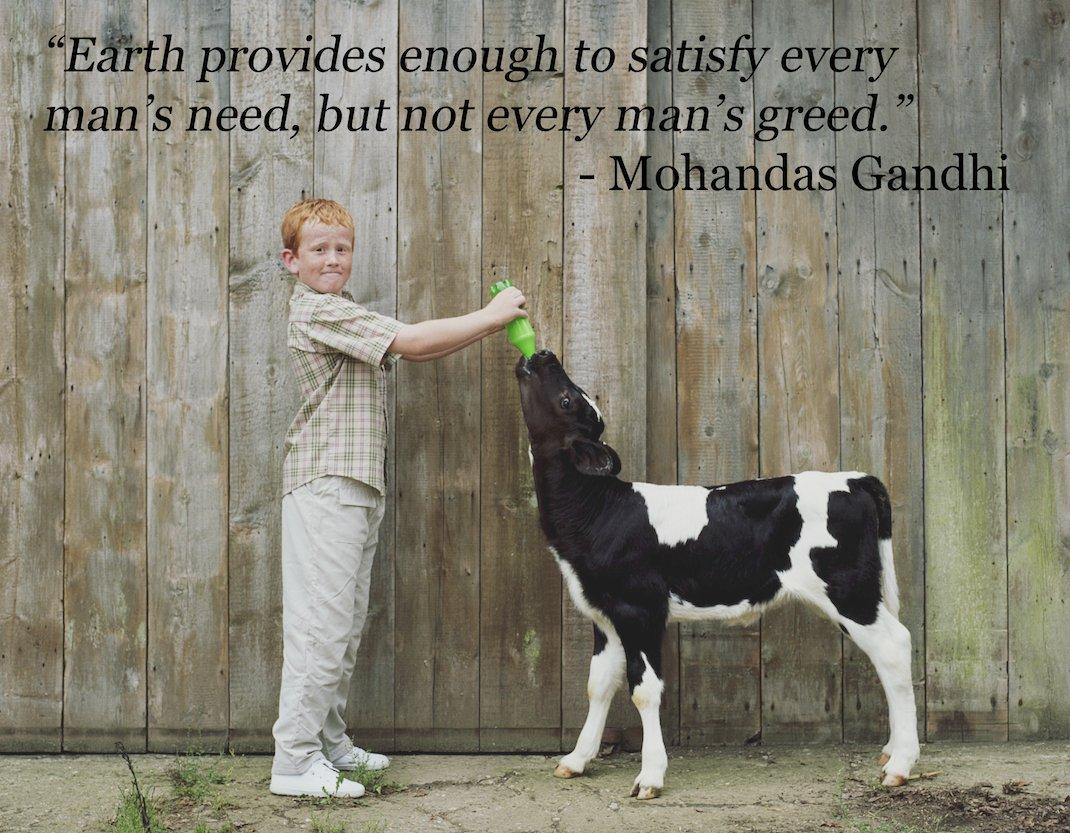 Vegan Quotes Go Vegetarian Quotes  More Information
