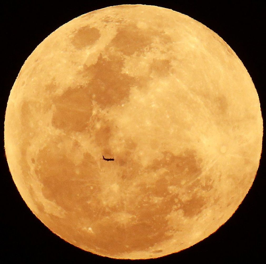 red moon qld - photo #29
