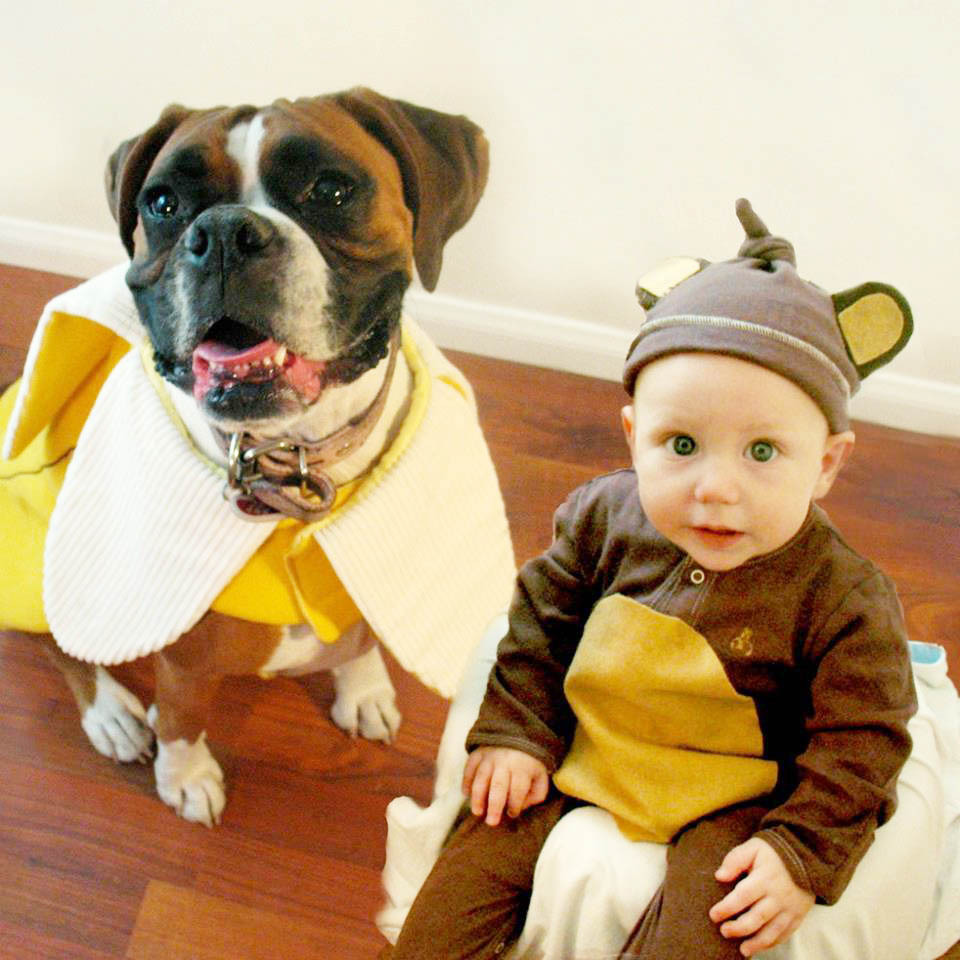 Photos A Boy And His Dog Dress Up Together Every
