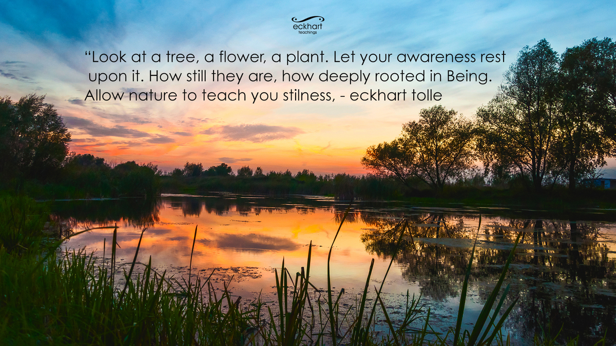 Image result for eckhart tolle peace quotes