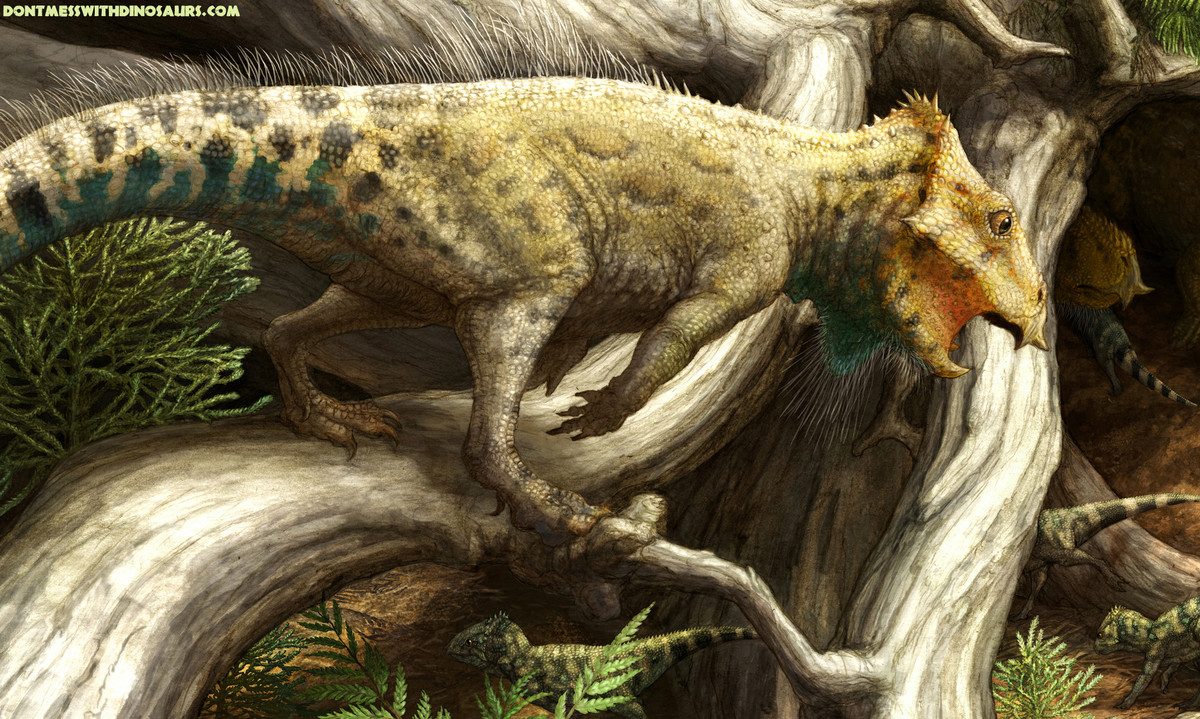 The 15 Most Magnificent Dinosaur Discoveries Of 2014 ...