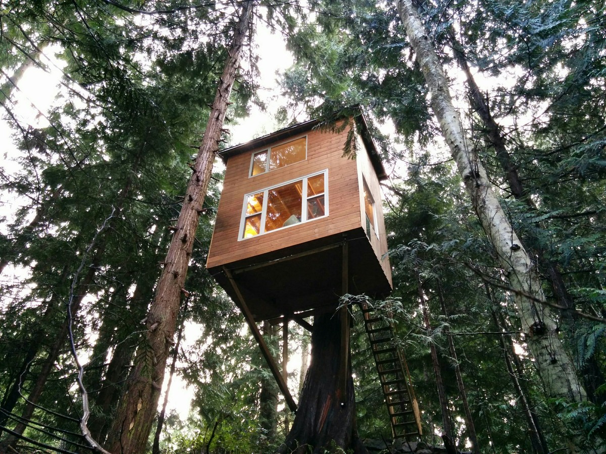 Damn Simple Tiny House Costs Just 1200 To Build Yourself The