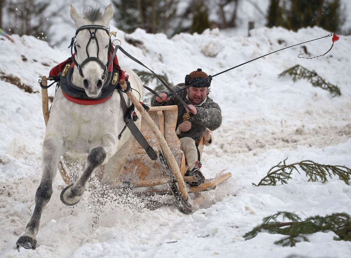 Pictures Of The Day The Best Images From Around The World On Tuesday 24th February 2015