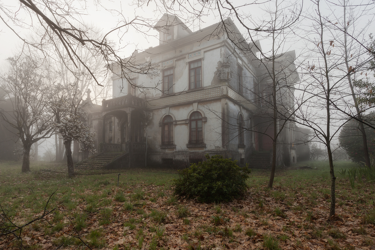 Abandoned Mansions For Sale Cheap Stunning Abandoned Homes Are Surprisingly Full Of Life