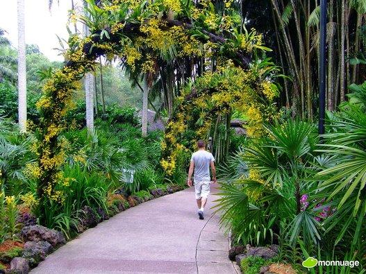 Un ministre indien d voile son truc pour avoir un beau for Avoir un beau jardin