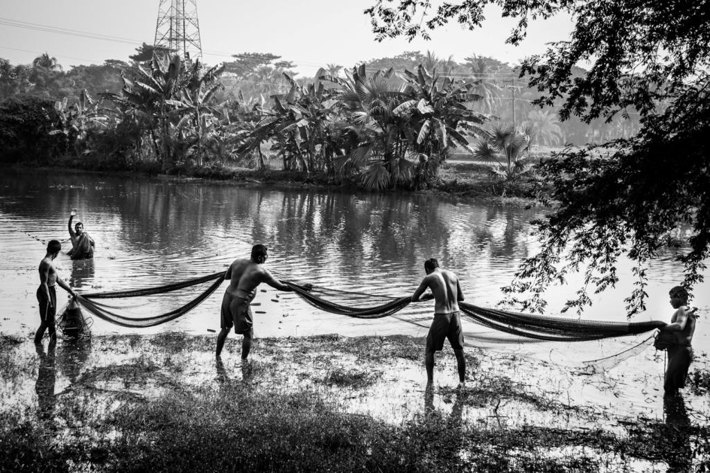 La pesca su Don nelle risposte di regione di Rostov
