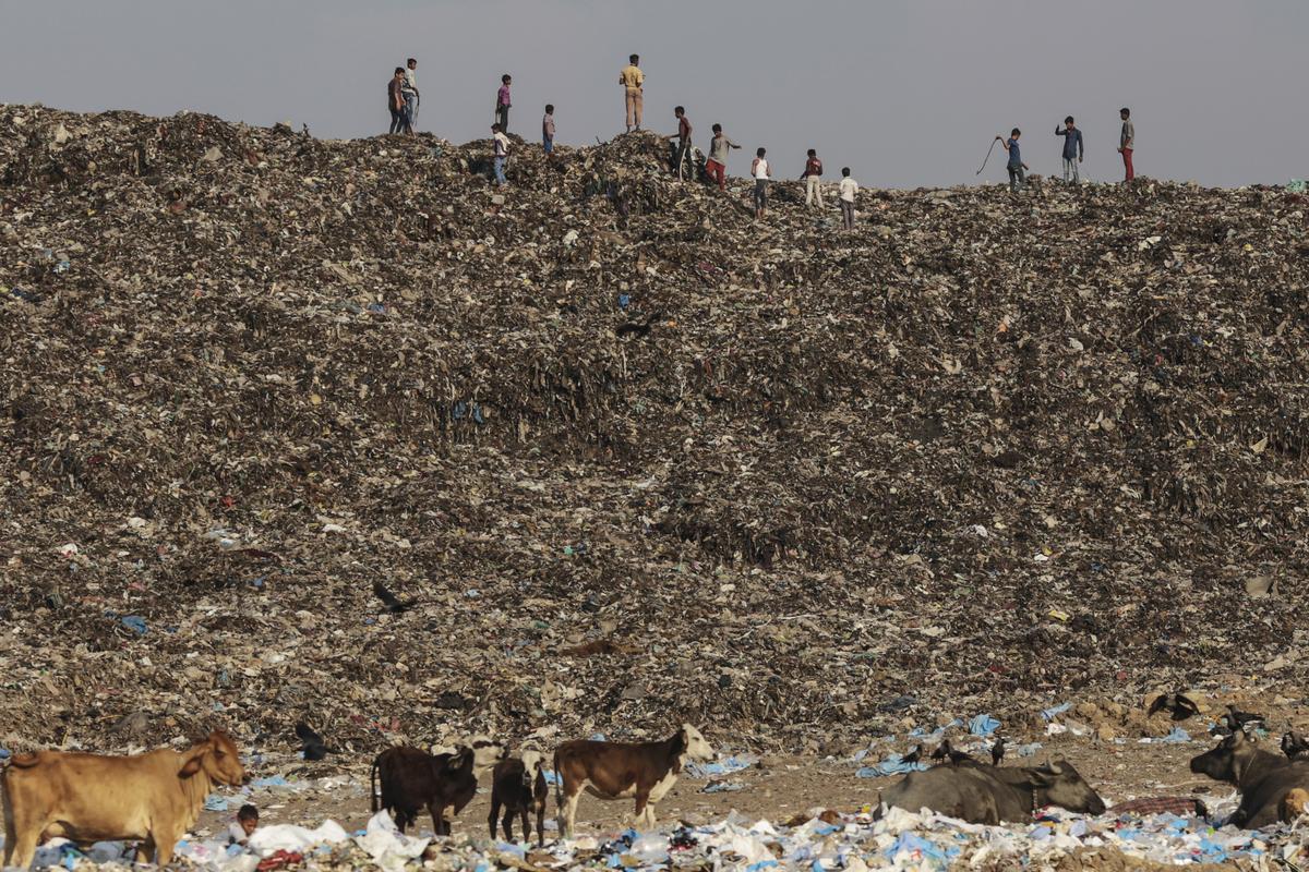 Trash Mountain Rises Up In Mumbai As City Runs Out Of