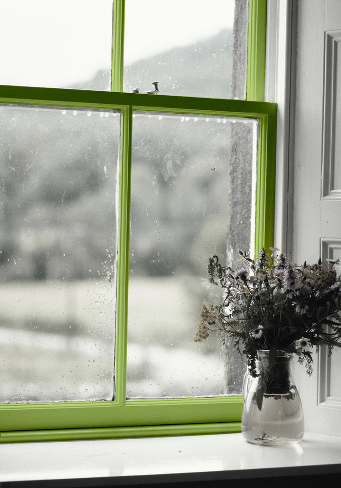 What Does Mold Smell Like >> 7 Germ Havens You Probably Forgot To Clean | HuffPost