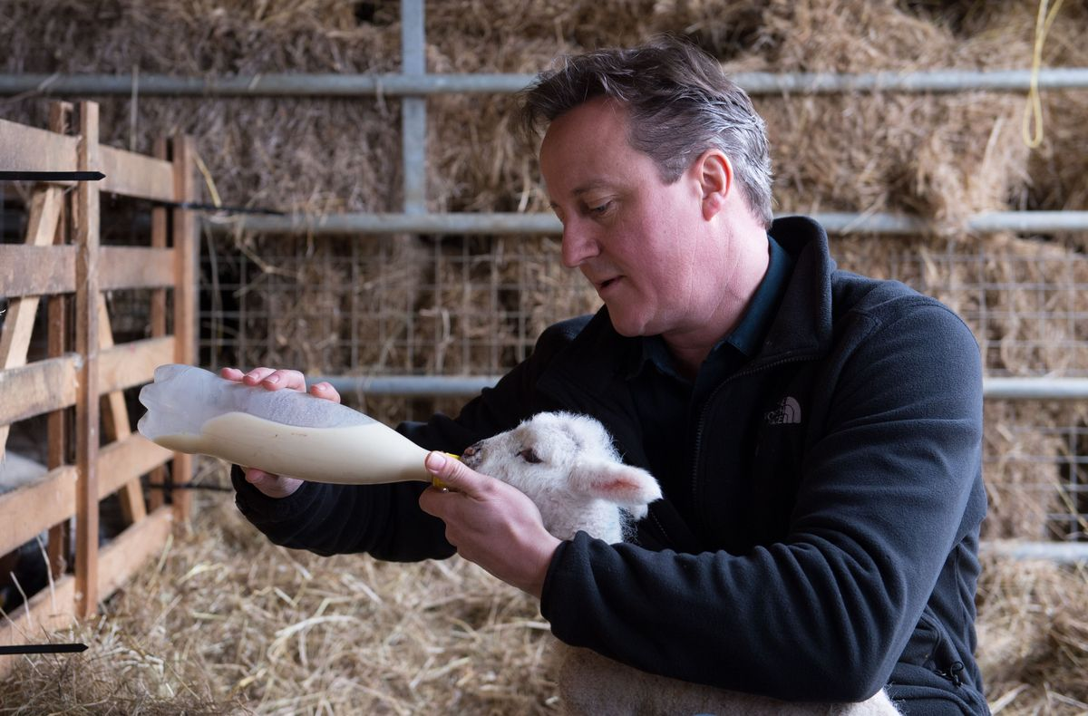 David Cameron Uses Easter Message To Praise Britain As A