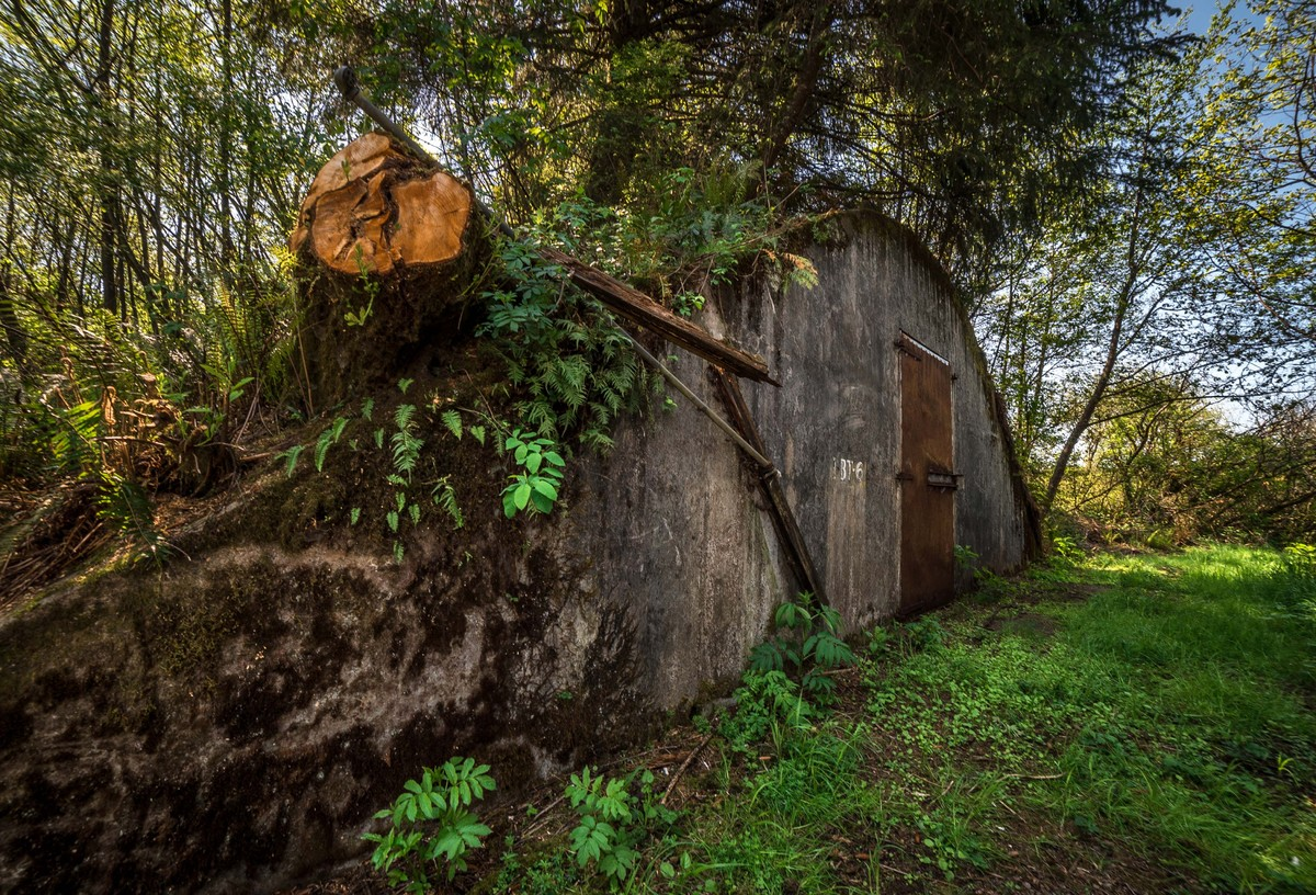 Stunning Pictures Show Abandoned Second World War Naval