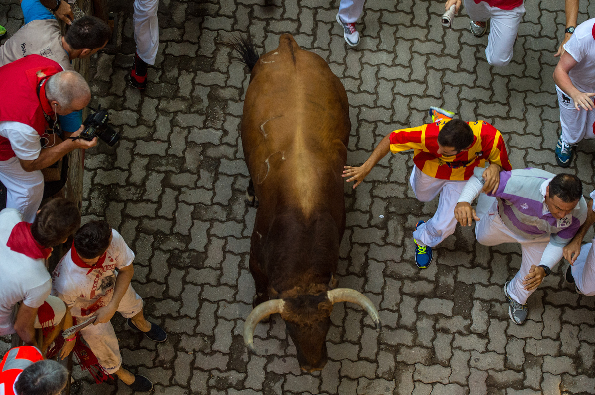 the pamplona bull run danger bull s Play the extreme pamplona game a running bull is chasing you through the streets of europe 1-2-3-go it's the yearly 'running of the bulls' in the spanish city of.