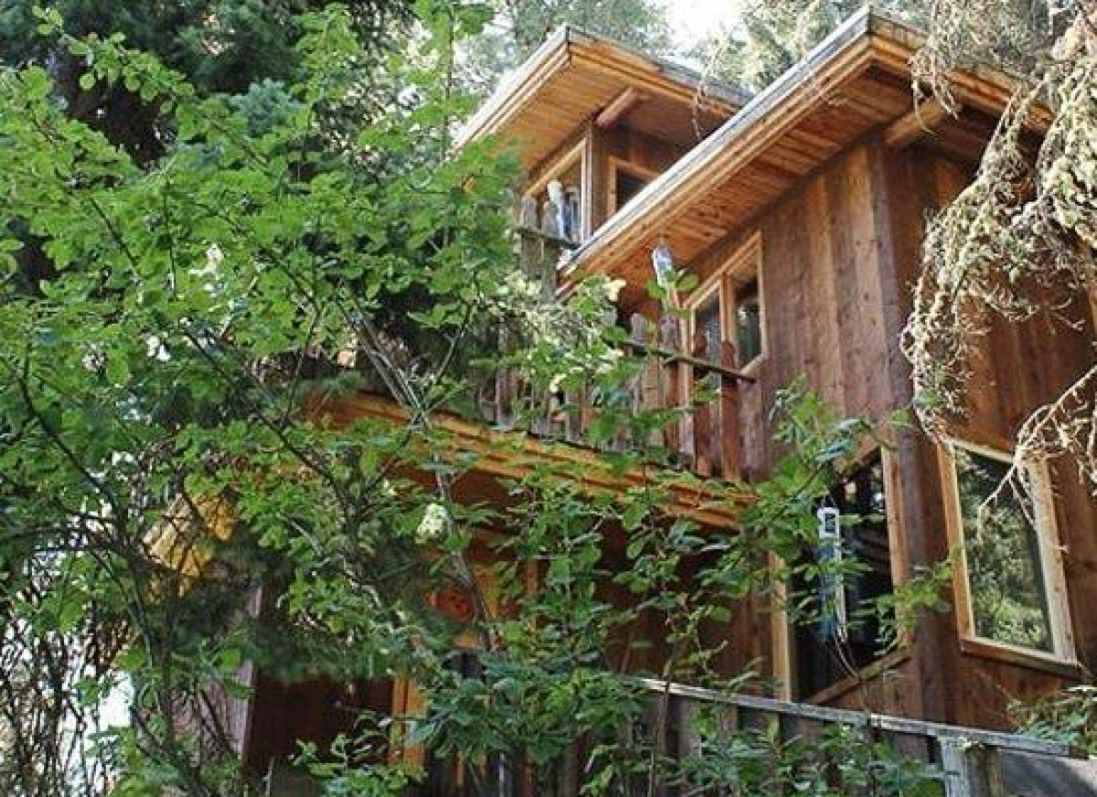 Treehouse Masters Irish Cottage 10 incredible tree-house hotels in the u.s. | huffpost