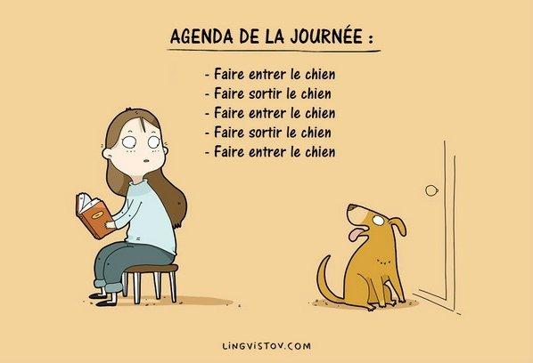Ces dessins racontent le vrai quotidien des chiens et de leurs ma tres - Animaux humoristiques ...