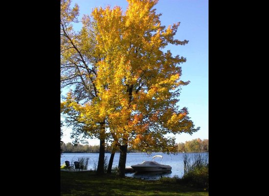 October on the Rideau