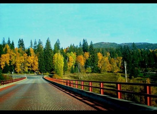 Fall Colors at Ione Bridge, Ione, WA