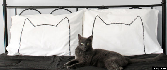 CATPILLOWCASE