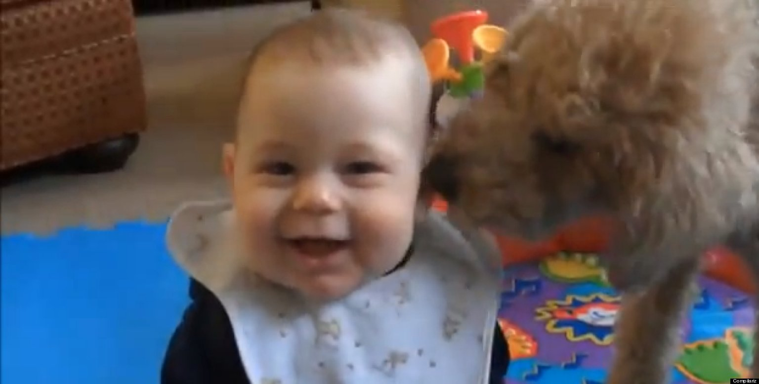 Images of Babies Laughing Babies Laughing at Dogs